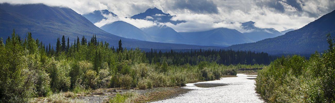 Landscape, Yukon Territory